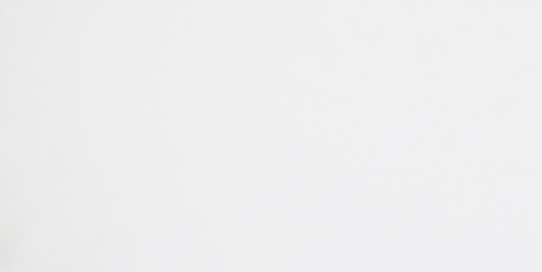 Wit glans 30 x 90 webshop for Matte tegels